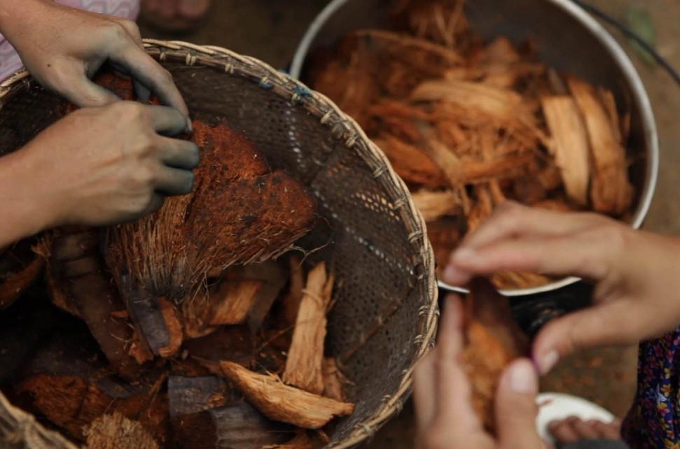 Bahan Untuk Membuat Cocopeat