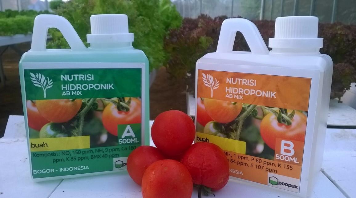 apa itu nutrisi hidroponik