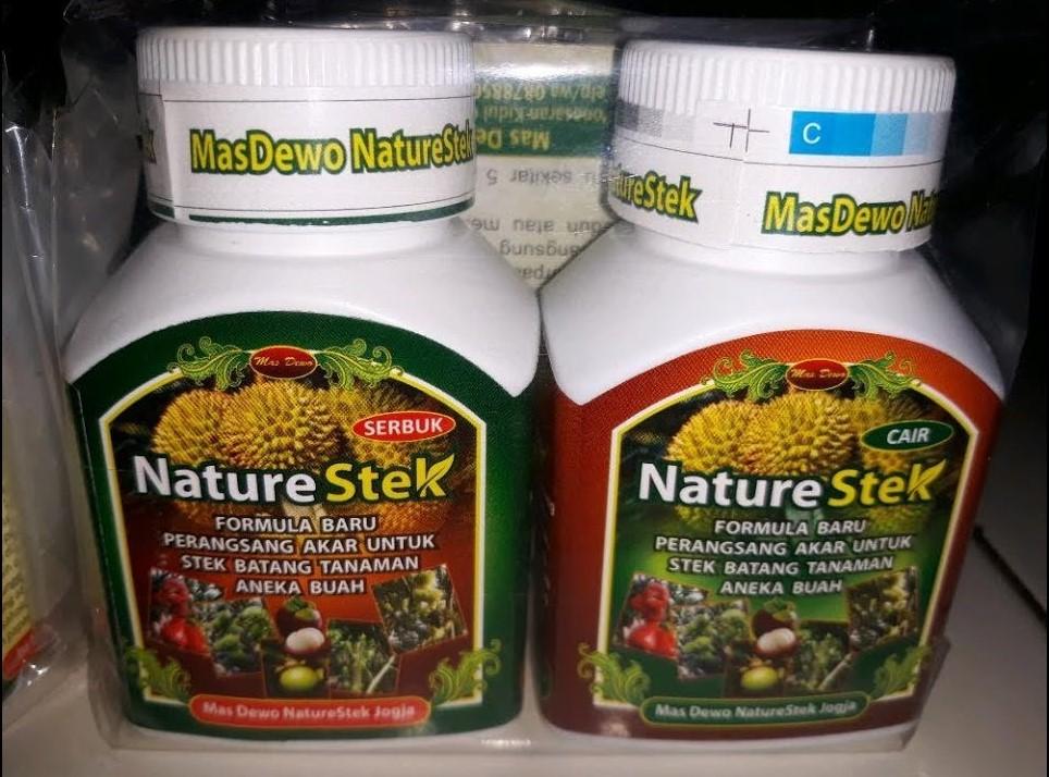 Hormon Untuk Stek
