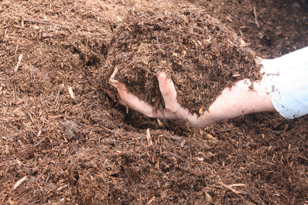 Menambahkan Kompos pada lahan Tanam