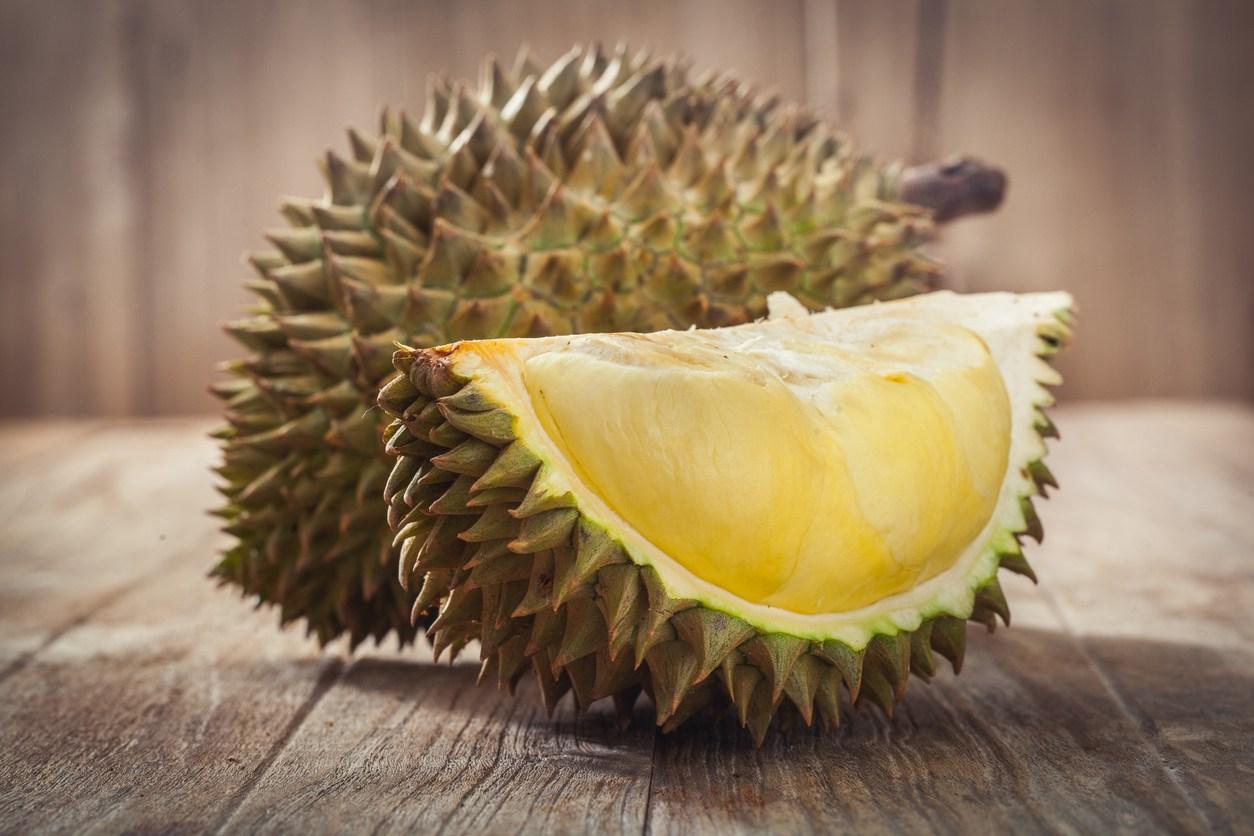 Pengusir Tikus Durian